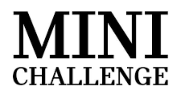 Mini Challenge 2019